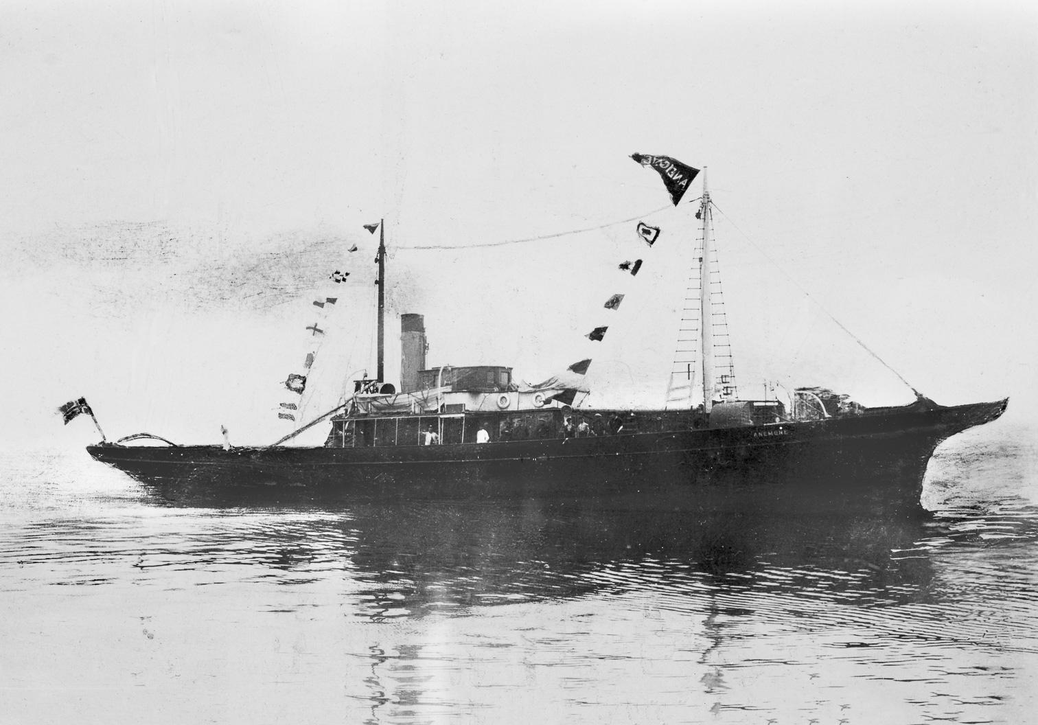 SS Anemone